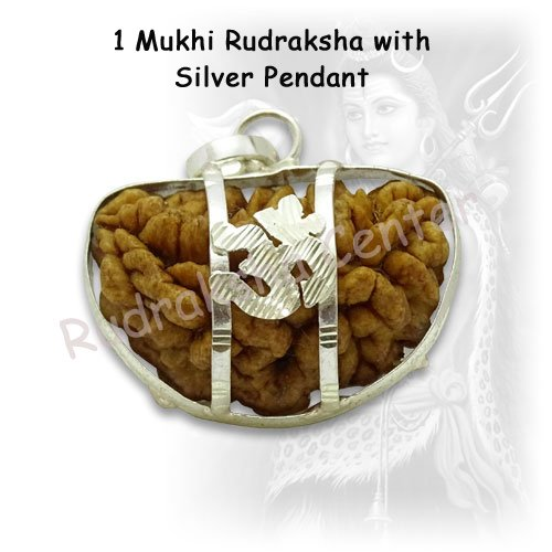 One Mukhi Rudraksha with Silver Om Pendant