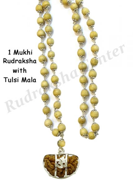 One Mukhi Rudraksha with Tulsi Mala