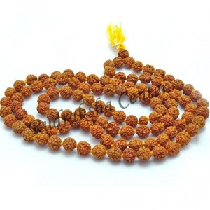 Five Mukhi Rudraksha Mala Indonesian