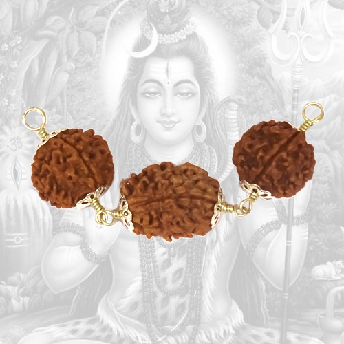 Divine Health Rudraksha Power Combination