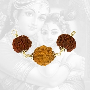 Santan Yog Prapti Rudraksha Power Combination