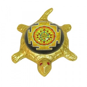 Tortoise with Shree Yantra